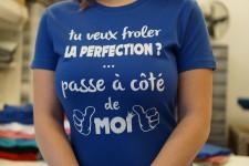 Froler la perfection (F)