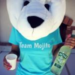 Team mojito